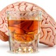 Model of a human brain next to a glass of alcohol