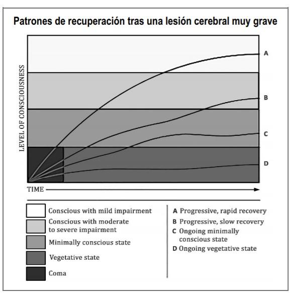 Gráfico de líneas que muestra cuatro patrones de recuperación después de una lesión cerebral muy grave. Cinco niveles de conciencia están representados en el gráfico: Coma (esquina inferior izquierda del gráfico); Estado vegetativo (cuadrante inferior del gráfico); Estado de mínima consciencia o mínimamente consciente (tercer cuadrante del gráfico); Consciente con deterioro moderado a grave (segundo cuadrante de la tabla); y Consciente con deterioro leve (cuadrante superior del gráfico). El eje X representa el tiempo, y los cuatro patrones de recuperación muestran cómo las personas pueden diferir en cuanto a la velocidad y los resultados de su recuperación. El patrón A muestra una recuperación progresiva y rápida, comenzando en coma y progresando en un arco liso hacia consciente con deterioro leve. El patrón B muestra una recuperación progresiva lenta, comenzando en coma y progresando en una línea ligeramente ondulada a consciente con deterioro moderado a grave. El patrón C muestra un estado continuo de mínima consciencia, comenzando en el coma y progresando, siguiendo una recuperación lenta antes de aplanarse al final. El patrón D muestra un estado vegetativo en curso, comenzando en coma y apenas progresando en una línea bastante plana a través del estado vegetativo.