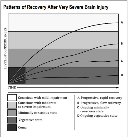Line chart showing four patterns of recovery following very severe brain injury. Five levels of consciousness are represented on the chart: Coma (bottom left corner of the chart); Vegetative state (bottom quarter of the chart); Minimally conscious state (third quarter of the chart); Conscious with moderate to severe impairment (second quarter of the chart); and Conscious with mild impairment (top quarter of the chart). The X axis represents time, and the four patterns of recovery show how people can differ in the speed and outcomes of their recovery. Pattern A shows progressive, rapid recovery, starting at coma and progressing in a smooth arc to conscious with mild impairment. Pattern B shows progressive, slow recovery, starting at coma and progressing in a slightly wavy line to conscious with moderate to severe impairment. Pattern C shows an ongoing minimally conscious state, starting at coma and progressing with slow recovery before flattening out at the end. Pattern D shows an ongoing vegetative state, starting at coma and barely progressing in a fairly flat line through vegetative state.