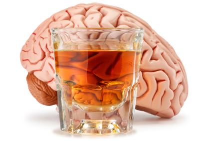 A glass of amber-colored alcohol in front of a plastic model of a brain