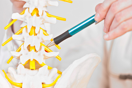 Pain after Spinal Cord Injury | Model Systems Knowledge