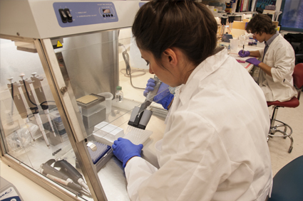 Researcher in a lab working with stem cells